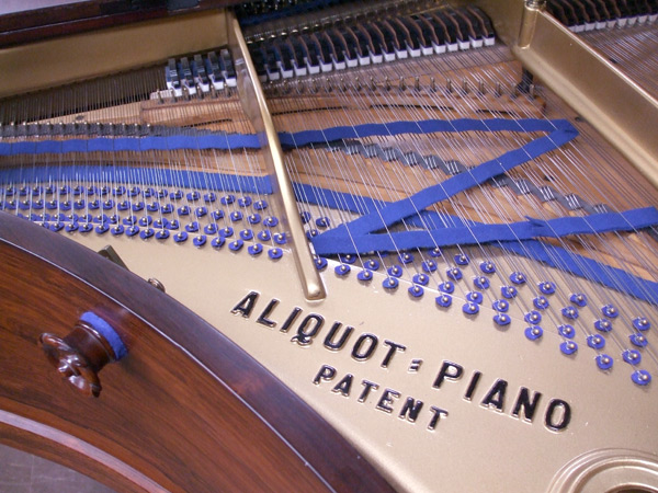Bluthner Model 4 grand piano detail 2 - fully restored